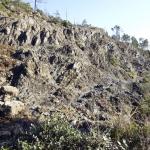 Le rocce tipi che del Monteferrato