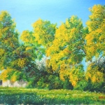 3-alberto-bargagna-mimose-1-003-r