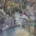 53-marco-chiarini-cascata-nel-bosco-r